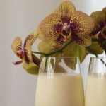 milk-and-orchids